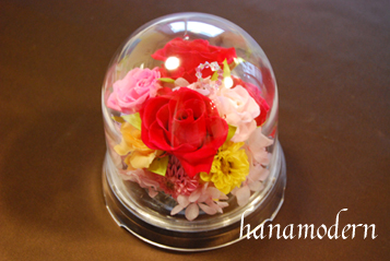 flowerdome218.jpg