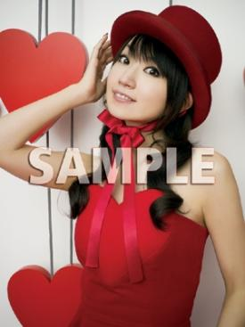 1_4988003804411_file_1.jpg