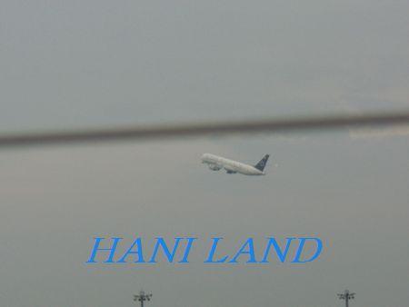 帰国飛行機 3