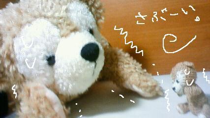 200912211954000.jpg