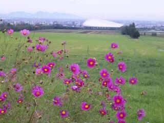 羊が丘 札幌ドーム