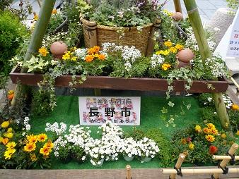 長野市の花