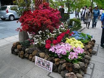 須坂市の花