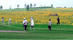 ひまわりパークゴルフ場