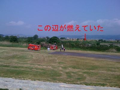 20100611_009.jpg