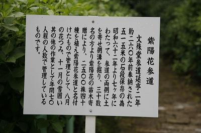 20100616_006.jpg