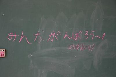 20101106_007.jpg
