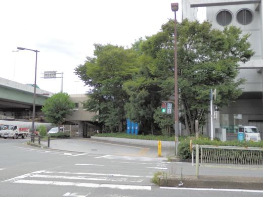 osakaminatowardajigawaohashiminamizumesinal1408-28.jpg