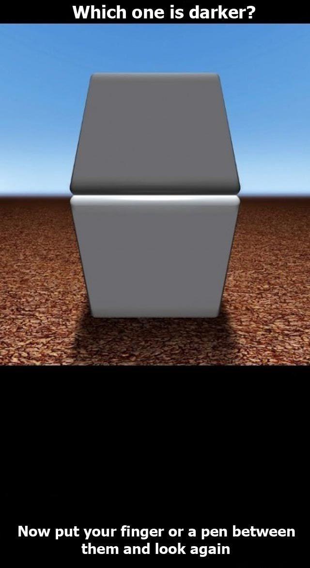cool_optical_illusion_448_high_02.jpg