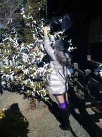 2011.1.6ママみくじ