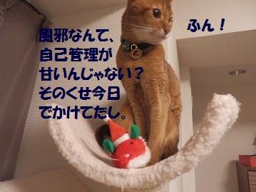 PC230059.jpg