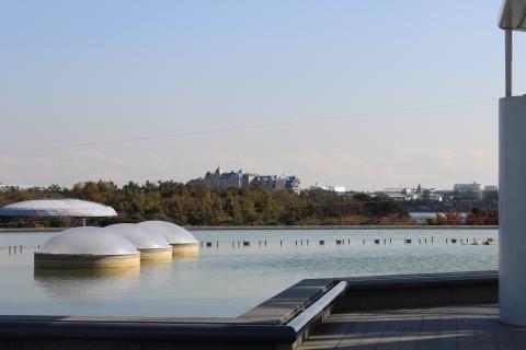 葛西臨海公園へ03(20131126)