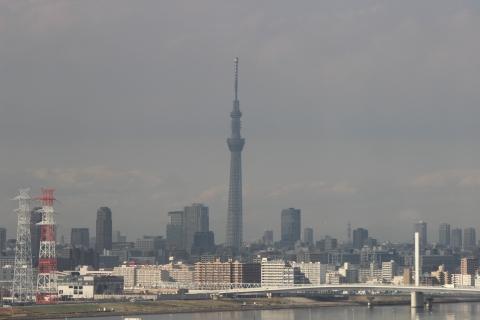 葛西臨海公園へ05(20131126)