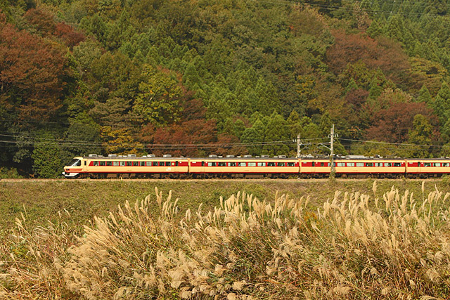 20100110.jpg