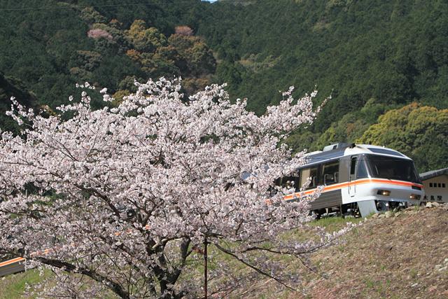 20100406.jpg