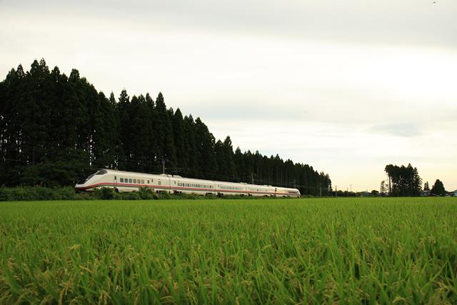 20100413.jpg