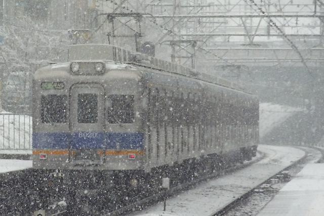 20110212.jpg