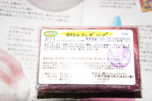 DSC08912_convert_20121117173411.jpg