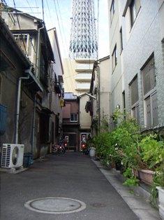 shinshou035.jpg
