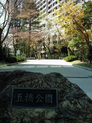 1004yokozuna001.jpg