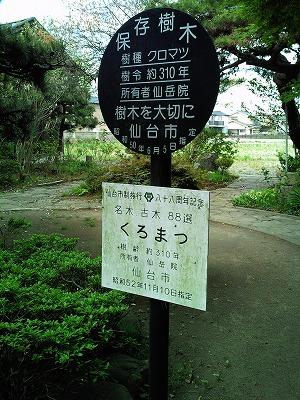 1005sengakuin10.jpg