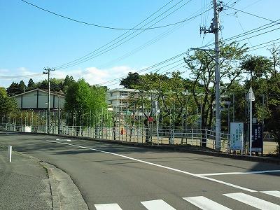1005yoheinuma01.jpg