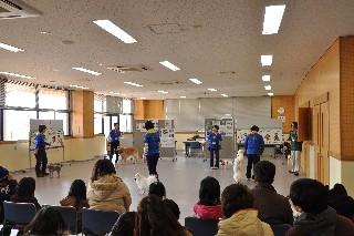 ダンシングチーム