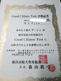 1GCT合格証書