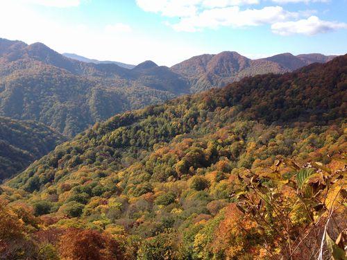 天狗峠からの眺め