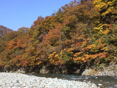 赤石渓流線20141026
