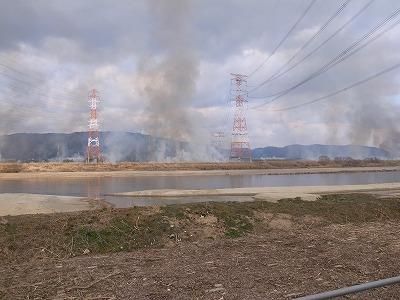 淀川芝生焼き