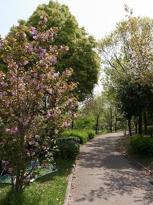 緑地公園その2