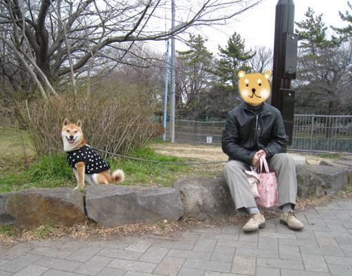 20120222ichimai001.jpg