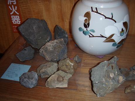 旅館の化石
