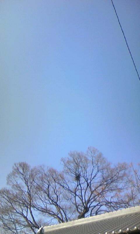 100218_142701紺碧の空