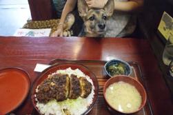food1231.jpg