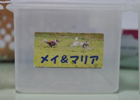 mm1295.jpg