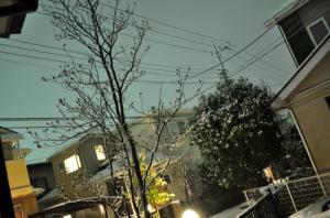 0201初雪2