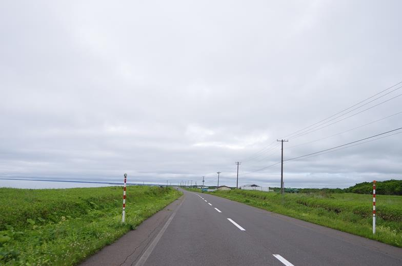 IMGP5231_B.jpg
