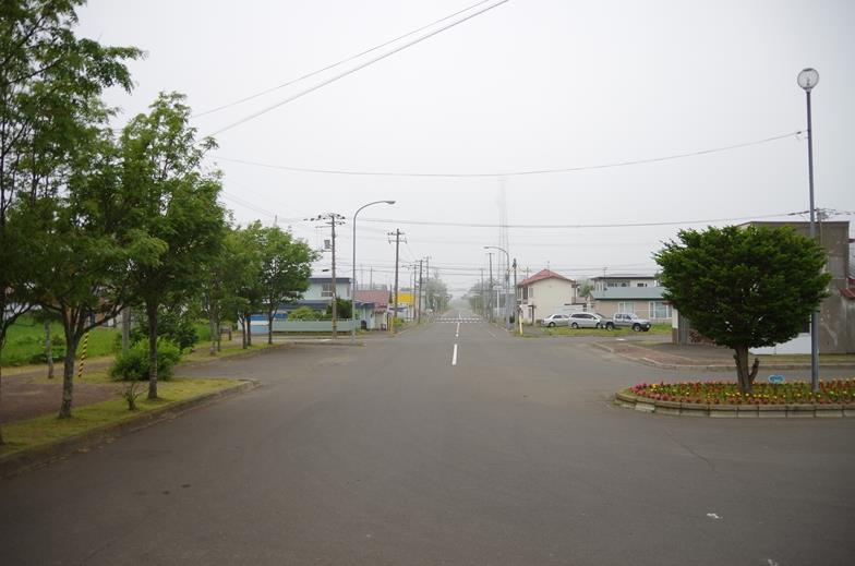 IMGP5693_B.jpg