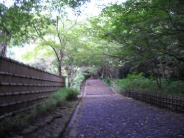 鎌倉文学館11