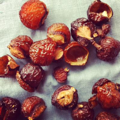 soap nuts1