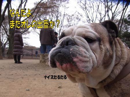 taisyo-1.jpg