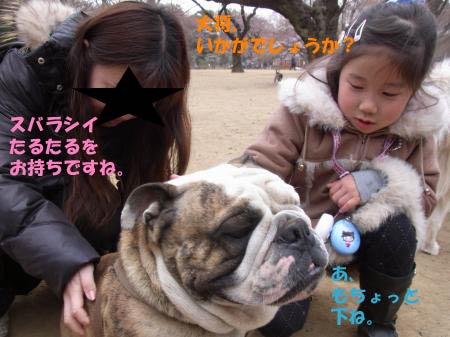 yoyo-5.jpg