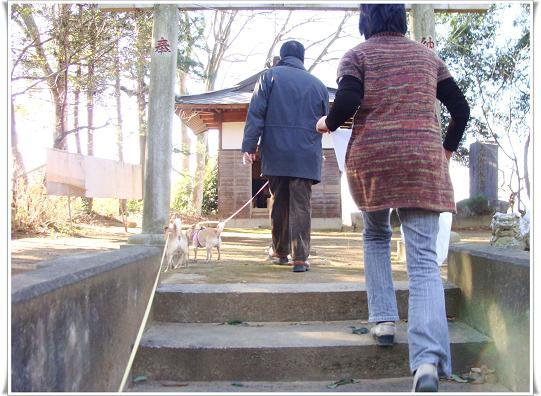 003hatumoude2011.jpg