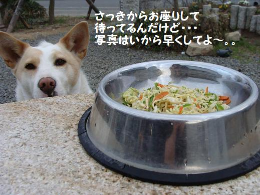 010hayakuhayaku.jpg