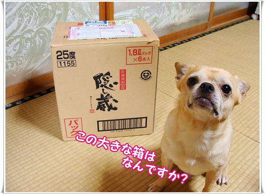 012OOKINAHAKO.jpg