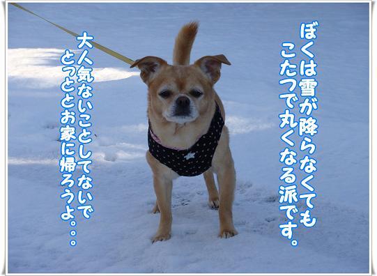 014KAEROUYO.jpg