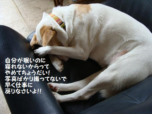 041yamete.jpg
