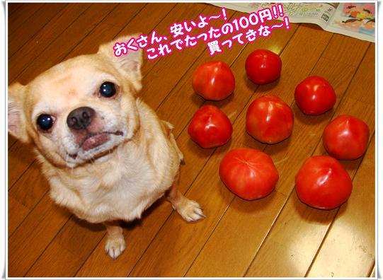 051yasuiyo.jpg